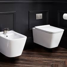 Bidet Define Dxv Modulus Wall Mounted Elongated Toilet Dxv