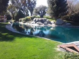 triyae com u003d huge backyard pond various design inspiration for