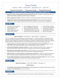 Sample Resume For Tutors by Professional Resume Writing Service By Expert Resume Writers