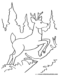 leaping deer color sheet create a printout or activity