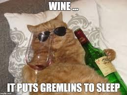 Birthday Wine Meme - wine cat birthday memes imgflip