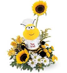flower delivery pittsburgh get well flowers delivery pittsburgh pa harolds flower shop