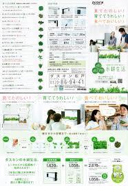 indoor hydroponic gardening with green farm blackcabbit u0027s world