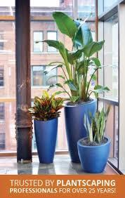 plant containers commercial planters flower pots wholesale
