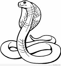 20 snake coloring pages for kids timykids