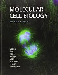 molecular cell biology harvey lodish arnold berk chris a
