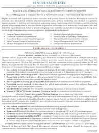executive resume design sales executive resume template vasgroup co