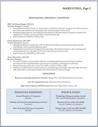Resume Sample With Skills Section by Small Business Owner Resume Sample Skills Section Small Business