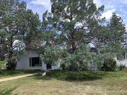 beautiful spacious mid century home in won vrbo