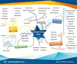 antihypertensive drugs mindmap pharmacolog pinterest