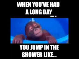 Long Day Memes - had a long day jump in the shower like laugh a little pinterest