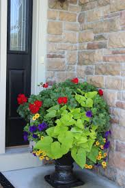 Porch Planter Ideas by 197 Best Window Boxes And Containers Images On Pinterest Flowers