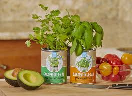 amazon com back to the roots garden in a can grow organic
