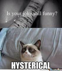 Hysterical Memes - hysterical by nickers2880 meme center