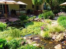 ponds and waterfalls sierra pacific design