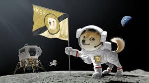 Astronaut Meme - doge dog astronaut meme moon landing earth planet flag wallpaper