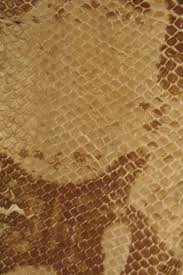 snake skin iphone wallpaper retina iphone wallpapers