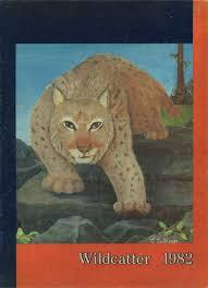 cat high the yearbook explore 1982 delmar high school yearbook delmar de classmates