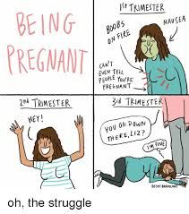 Being Pregnant Meme - being pregnant it trimester boobs on fire nausea can 7 cven tell