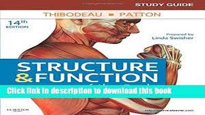 usmle road map anatomy choice image learn human anatomy image