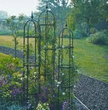 Climbing Plant Supports - medium barrington obelisk plant support gardening pinterest