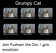 25 Best Memes About Grumpy - 25 best memes about cats friends funny and grumpy cat cats