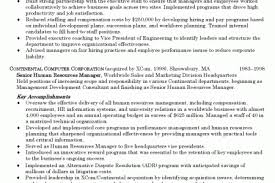 Sample Hr Director Resume by Manager Resume Blue Tint To Benefits Account Manager Resume
