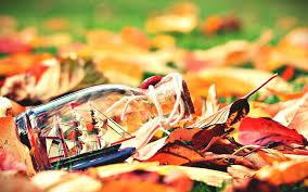mood leaves bottle boat ship sail autumn nature 7012030