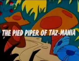 pied piper taz mania looney tunes wiki fandom powered