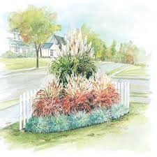 ornamental grass garden direct gardening