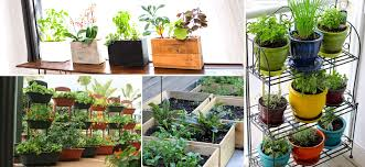 gardening landscaping apartment vegetable gardening the nano