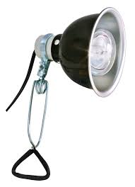 Zoo Med Light Fixture by Deluxe Porcelain Clamp Lamp Zoo Med Europe