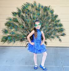Halloween Costumes 5 Boy 25 Peacock Costume Kids Ideas Peacock Costume
