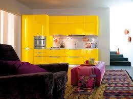 meuble cuisine jaune element de cuisine jaune chaios com