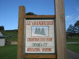 lil u0027 grandfather mounain christmas tree farm photo gallery