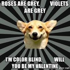 Will You Be My Valentine Meme - roses are grey violets are grey i m color blind will you be my