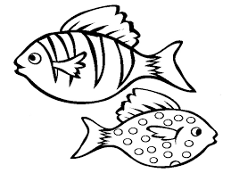 fish coloring page outline full size printable fish coloring pages