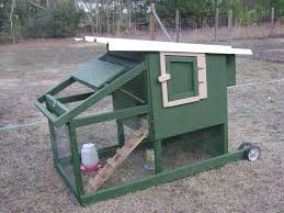new chicken tractor i built check it out backyard chickens