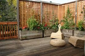 12 reasons why you should garden vertically the micro gardener