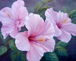 floral art exhibition wallpapers 348 best painting flowers images on pinterest painting flower
