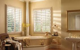 23 blinds for bathroom window cheapairline info