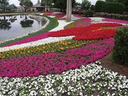 small flower garden layout flower design city garden ideas beautiful flowers and trees are