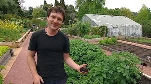 gardening australia fact sheet making perfect vegie soil
