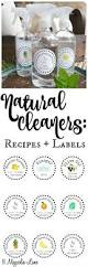 best 25 natural cleaning solutions ideas on pinterest vinegar