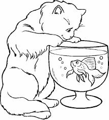 coloriage chat les beaux dessins de animaux à imprimer et