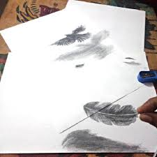 bird drawing sketch art on instagram