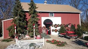 barn tree shop home
