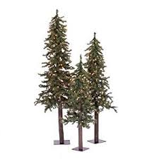 10 best top 10 best tree reviews images on