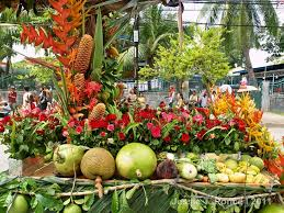 flowers and fruits flowers and fruits a traveler s tale