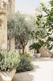 Front Yard Desert Landscape Mediterranean Exterior Best 25 Mediterranean Garden Ideas On Pinterest Mediterranean